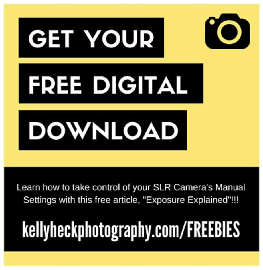 Photography Freebie - Camera Exposure Settings Explained by Kelly Heck Photography