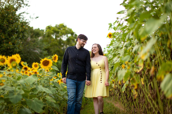 Save The Date Engagement Portraits at Sunflower Gardens in Westminster, Maryland | Kelly Heck Photography