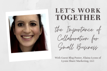 Guest Blogger Elaina Lyons of Lyons Share Marketing in Frederick, Maryland